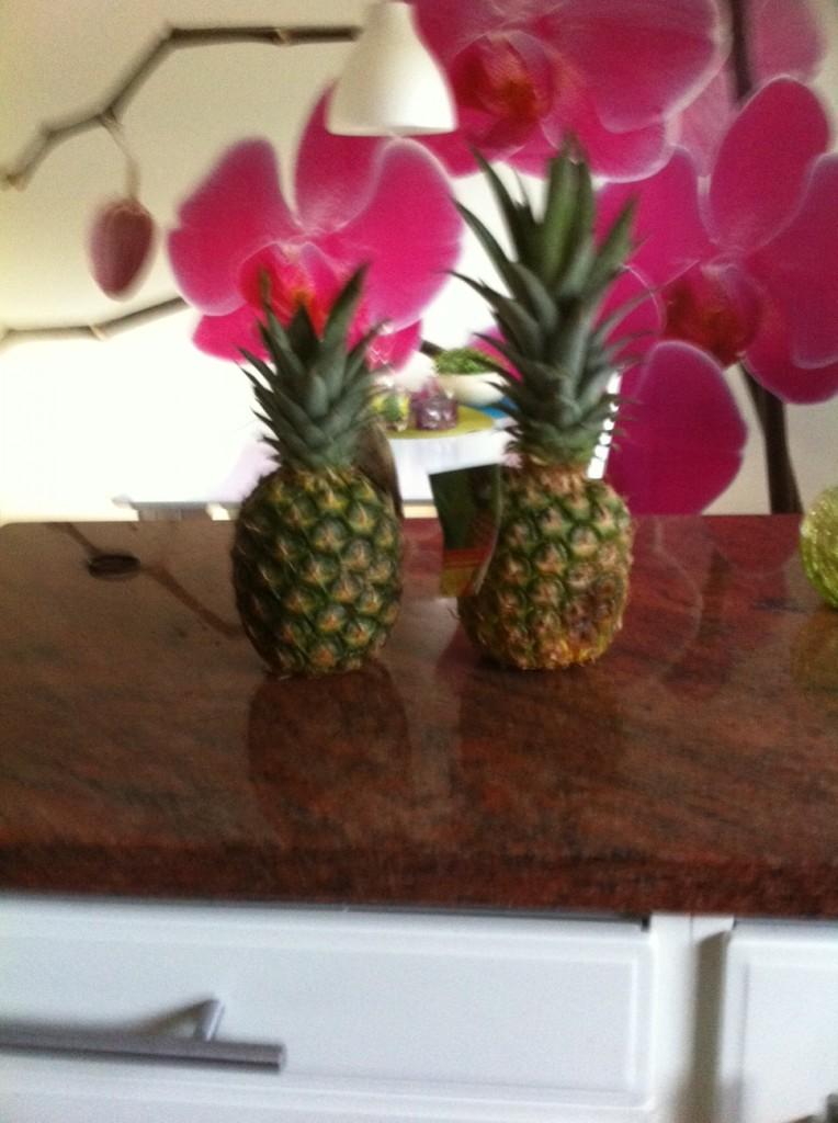 Min familj har gåt med på att köpa min favorit frukt annanas, en till ljus och en till att äta.