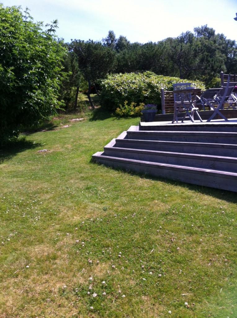 Trappan upp till våran altan. Och trädgård.