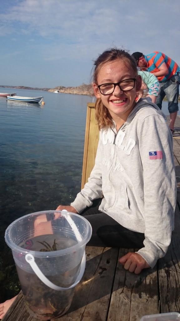 I fredags fiskade jag krabbor med Marko och sen mamma, vi har u den precis nedanför/på snedden till våran husvagn, där alla är dygnet runt, som jag sa i videon, som jag gjorde i husvagnen, på min födelsedag, det var mysigt. När jag och Marko fiskade så hämtade mamma och Elliot en håv till oss, för vi märkte att vi behövde det sen, det gick mycket lättare med en håv, Elliot höll i håven. Men innan vi fiskade köpte vi fiskespö, räkor och en krabb hink i den lila butiken på campingen tillsammans, det var mysigt.