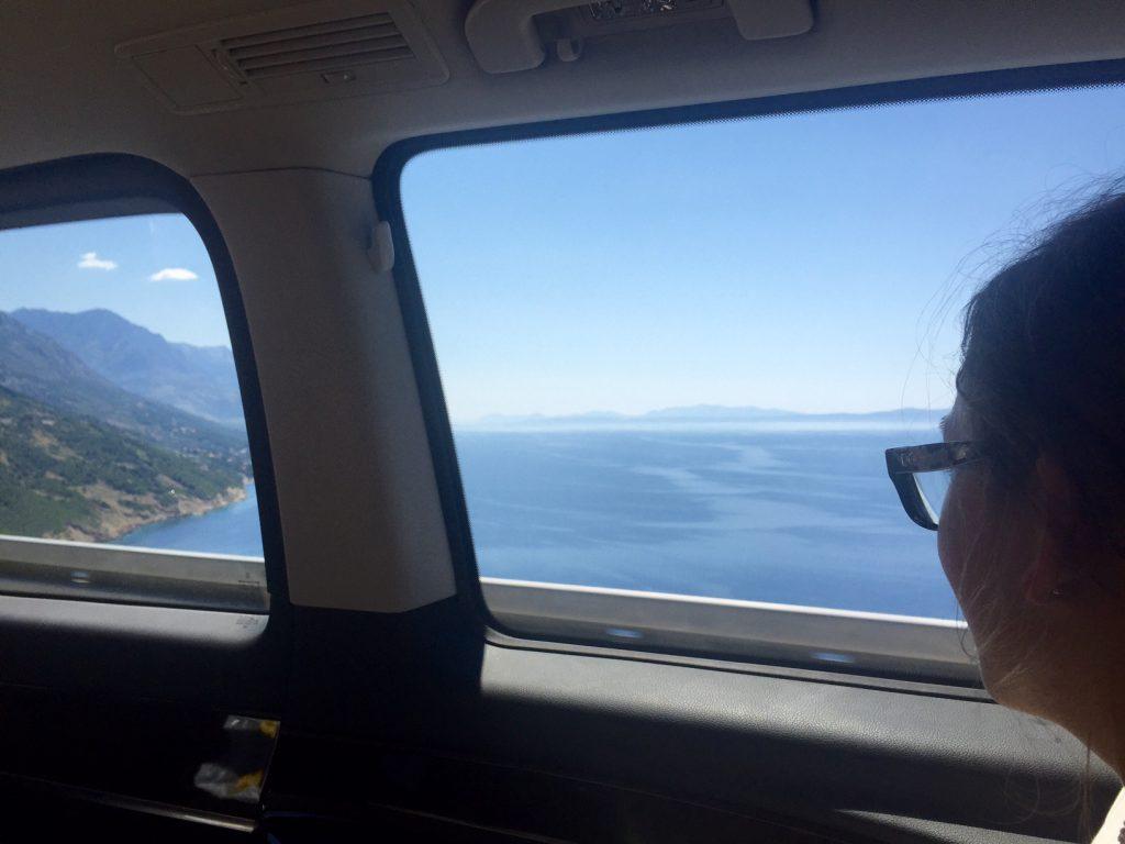 Utsikten från Taxin